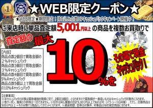 web-300x211